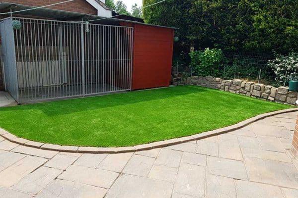 kennel-grass