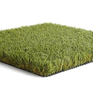 Namgrass