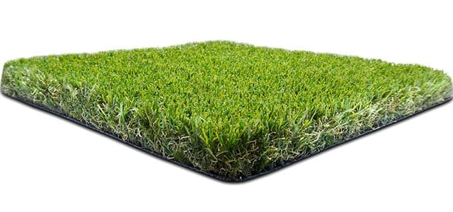 Namgrass Downton